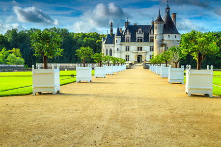 the loire: Beautiful Chenonceau royal castle on the Loire river, decorated entrance walkway with citron trees, Loire valley, France, Europe
