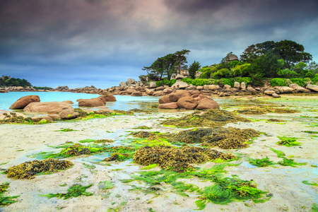 ploumanach:  Amazing rocky beach with pink granite stones and wonderful green gardens on the coast, Ploumanach, Perros-Guirec, Pink Granite Coast, Brittany, France, Europe Stock Photo