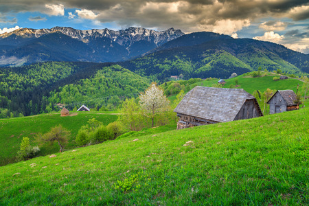 Amazing countryside in springtime, Bran, Transylvania, Romania, Europe