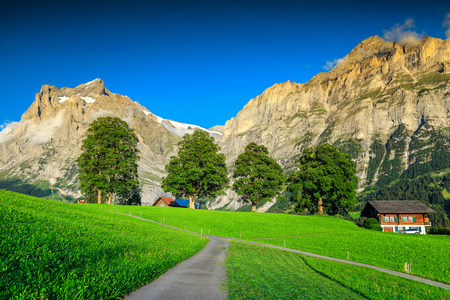 Wonderful green grass and pasture with spectacular rural farm in Grindelwald mountain village. Breathtaking summer alpine landscape in Bernese Oberland, Switzerland, Europe