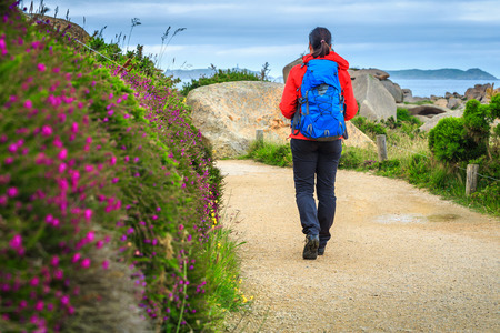 shorelines:    Flowery promenade in the natural park. Active young sportive hiker woman walking on the hiking trail, Perros Guirec, Brittany region, France, Europe Stock Photo