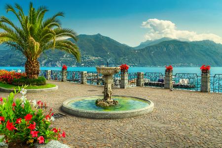 驚くほどの遊歩道には、色とりどりの花、海岸、コモ湖ロンバルディア州地域、北イタリア、ヨーロッパでヤシの木