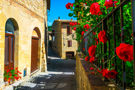 Wonderful narrow ornamental street with flowered garden. Beautiful entrance and old paved street view decorated garden with colorful red roses in Monticchiello, Tuscany, Italy, Europe 免版税图像
