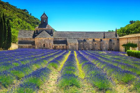 Admirable travel destination, beautiful violet lavender fields with Senanque monastery near Gordes touristic village, Luberon, Provence region, France, Europe Editorial