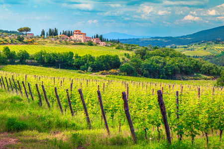 Amazing wine grower territory and vineyard with house on the hill, Chianti region, Tuscany, Italy, Europe
