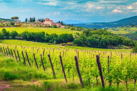 Verbazingwekkend wijnbouwersgebied en wijngaard met huis op de heuvel, Chianti-gebied, Toscanië, Italië, Europa