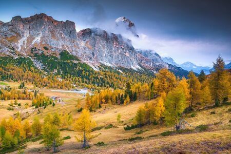Picturesque alpine autumn landscape with yellow larch forest and high snowy mountains, near Cortina d Ampezzo, Dolomites, Italy, Europe