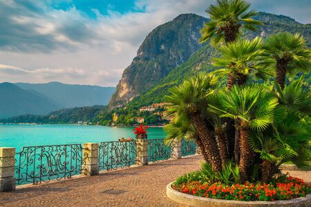 Summer holiday destination, amazing walkway with colorful flowers in public park and palm trees on the shore, Lake Como, Menaggio, Lombardy region, Northern Italy, Europe