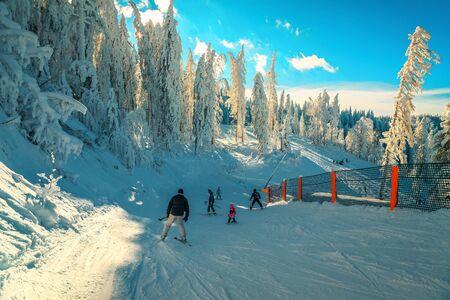 Beliebtes Winterskigebiet mit gefrorenen Bäumen und Landschaft. Aktive Skifahrer Skifahren bergab und genießen die Natur, Poiana Brasov, Karpaten, Siebenbürgen, Rumänien, Europa Standard-Bild