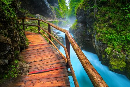 Admirable and well known touristic attraction near Bled. Amazing Vintgar gorge with wooden footbridge and rumble emerald color Radovna river, near Bled, Gorje, Slovenia, Europe