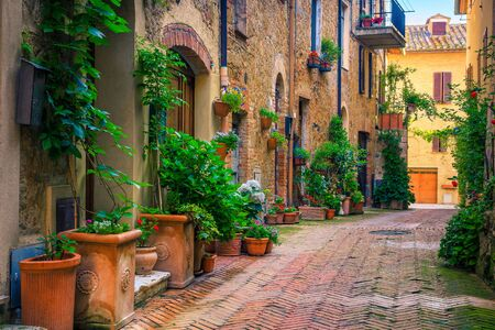 Admirable traditional Tuscany street view. Spectacular medieval stone houses and narrow cute paved street with flowery entrances, Pienza, Tuscany, Italy, Europe 版權商用圖片