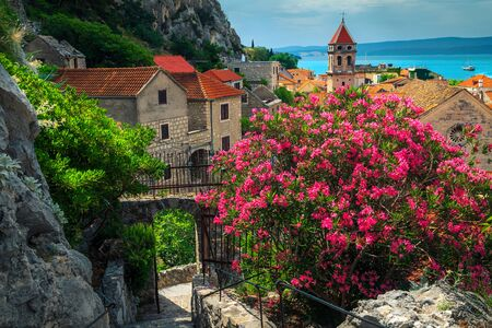 Spectacular walkway with oleander flowers and old stone houses in Omis resort. Fantastic travel and vacation destination, Omis, Dalmatia, Croatia, Europe Stok Fotoğraf