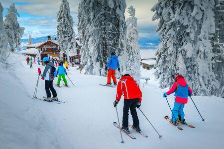Malerisches Winterskigebiet mit Skifahrern in Rumänien. Schöner touristischer und Wintersport-Urlaubsort. Schneebedeckte Kiefern mit sportlichen Skifahrern im Skigebiet Poiana Brasov, Siebenbürgen, Rumänien, Europe
