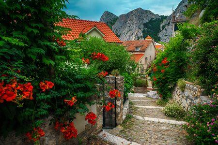 Acogedora calle mediterránea decorada con flores de trompeta en Dalmacia, Omis, Croacia, Europa