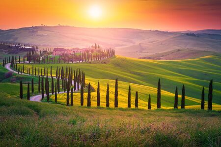 Well known Tuscany landscape with grain fields, cypress trees and houses on the hills at sunset. Summer rural landscape with curved road in Tuscany, Italy, Europe
