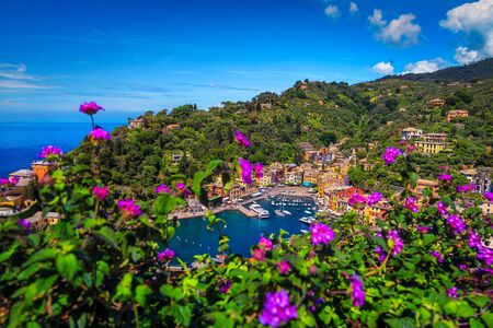 Gorgeous mediterranean tourist resort and harbor with luxury yachts, view from the flowery balcony, Portofino, Liguria, Italy, Europe