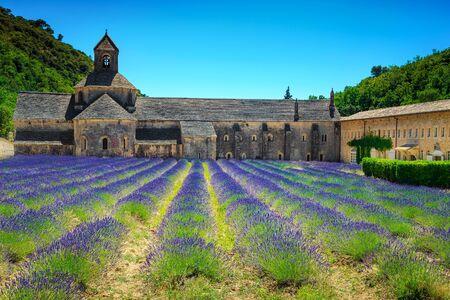 Stunning violet lavender plantation with Senanque monastery near Gordes village. Famous touristic place in Luberon, Provence region, France, Europe Archivio Fotografico