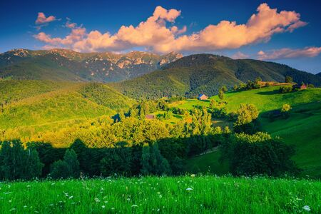 Picturesque summer alpine landscape with green fields and mountains at sunset, Simon, Transylvania, Romania, Europe