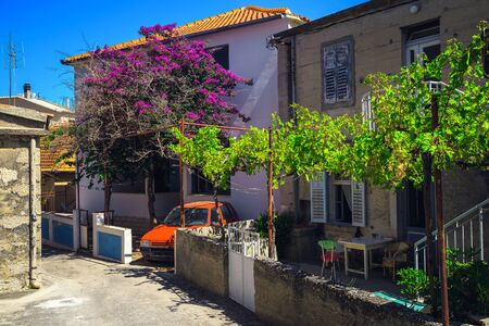 Pink bougainvillea flowers and grapevine in the garden. Cozy narrow street with mediterranean houses in Primosten, Dalmatia, Croatia, Europe Stock Photo