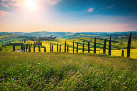 Amazing summer Tuscany countryside scenery with winding road in the grain fields on the hills, Italy, Europe