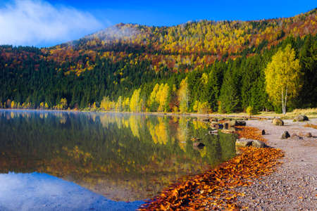 Admirable autumn landscape with colorful deciduous trees in the forest and famous volcanic lake. Fantastic touristic and travel place with Saint Ana lake, Transylvania, Romania, Europe