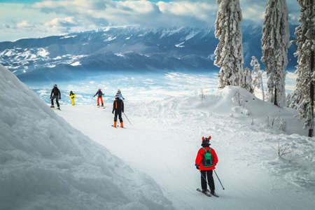 Stunning snow covered trees and winter scenery. Active skiers skiing downhill in Poiana Brasov ski resort, Transylvania, Romania, Europe