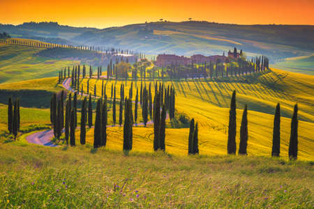 Beautiful Tuscany scenery with grain fields, cypress trees and houses on the hills at sunset. Summer countryside scenery and winding road in Tuscany, Italy, Europe Banque d'images