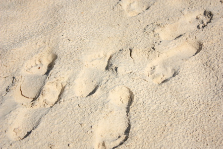 footsteps: footsteps on sand beach, wave Stock Photo