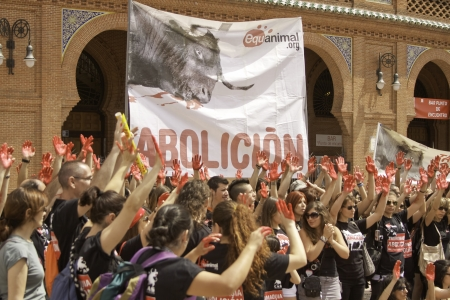 The Plaza de Toros de Las Ventas Protest