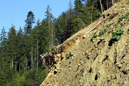 land slide: Landslide in the Carpathian mountains to Synevyrskiy pass near forest.