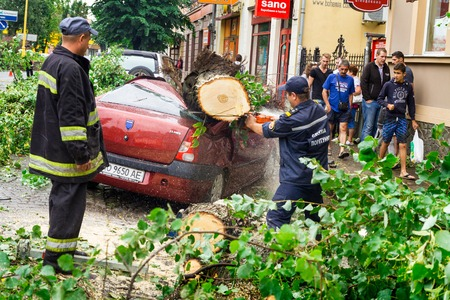 situations: Uzhgorod, Ukraine - July 26. 2016:  Employees of the Ministry of Emergency Situations of Ukraine release car crushed by a tree felled by hurricane. Editorial