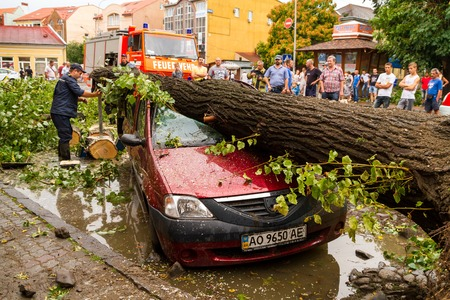 Uzhgorod, Ukraine - July 26. 2016:  Employee of the Ministry of Emergency Situations of Ukraine release car crushed by a tree felled by hurricane.