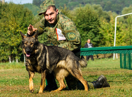 Mukachevo, Ukraine - September 27. 2016: Canine with his dog overcomes obstacles band during the first championship of the National Police of Ukraine with all-around dog handlers.