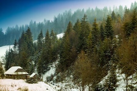 Winter landscape with old farm in the spruce forest in the Carpathian mountains. Stock Photo