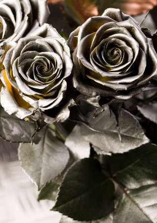 pinks: Silver roses