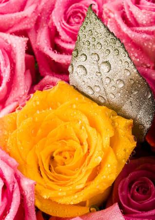 darling: Romantic flowers