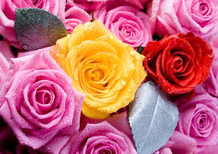 darling:  flowers Stock Photo