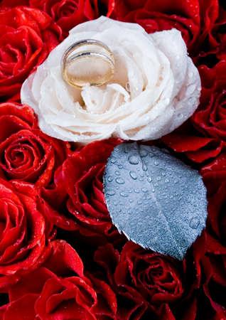 darling: Beautiful roses