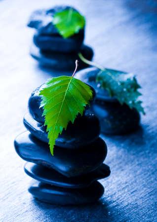 happieness: Leaf & Stone