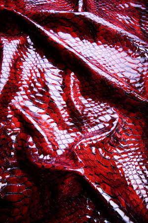 Snakeskin texture - leather background photo