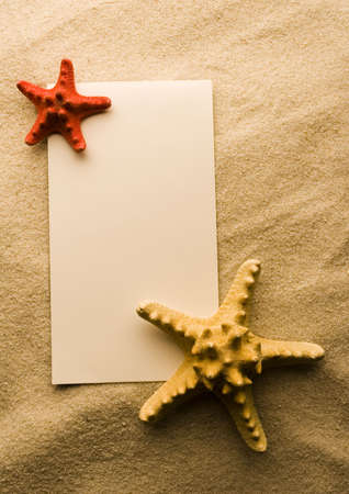 Paper background and seashell Stock Photo - 3221776