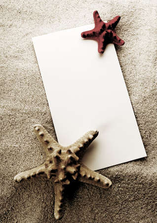 Sand and seashells frame Stock Photo - 3221624