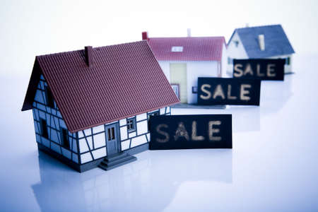 disownment: Real estate - for sale