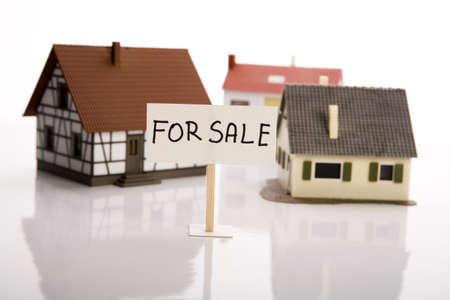 dispossession: Houses for sale