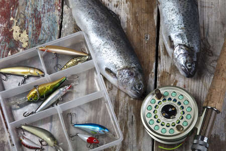 tackles: Collection of fly fishing