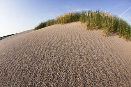 Sandy beach during summer and holidays Stock Photo - 5428165