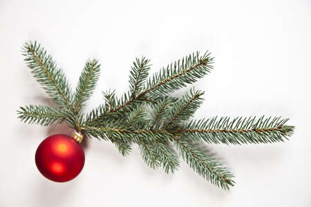 Christmas tree and Bauble photo