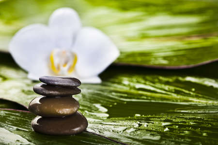 Zen is a freshness and the way of life photo
