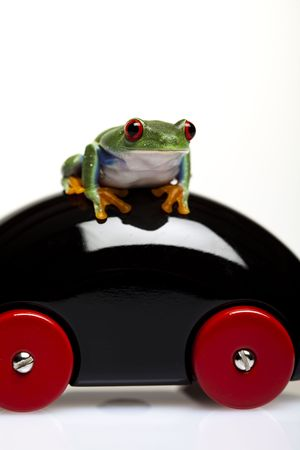 Car toy and crazy frog photo