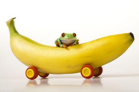 Fruit frog